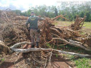 Polícia Militar Ambiental autua 1.198 pessoas, aumento de 77%, e aplicou R$ R$ 24,5 milhões em multas por infrações ambientais em 2020, aumento de 73%