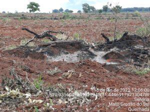 Polícia Militar Ambiental de Três Lagoas autua paulista em R$ 51,6 mil por derrubada de árvores e incêndio ilegal da vegetação nativa em sua fazenda em Selvíria |