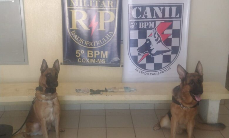 Polícia Militar com apoio do Canil prende autores de receptação, tráfico de drogas e furto em Coxim |