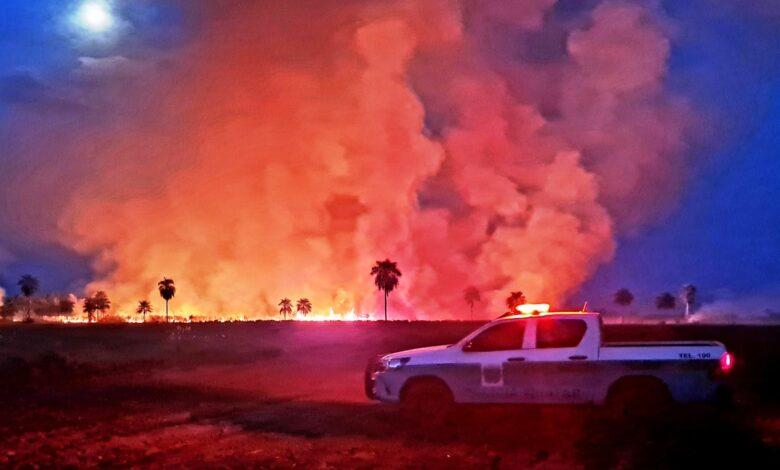 PMA de Naviraí autua mais um por incêndio e já são sete autuados em cinco dias na operação Prolepse que nesta fase inicial seria somente informativa para prevenção aos incêndios |