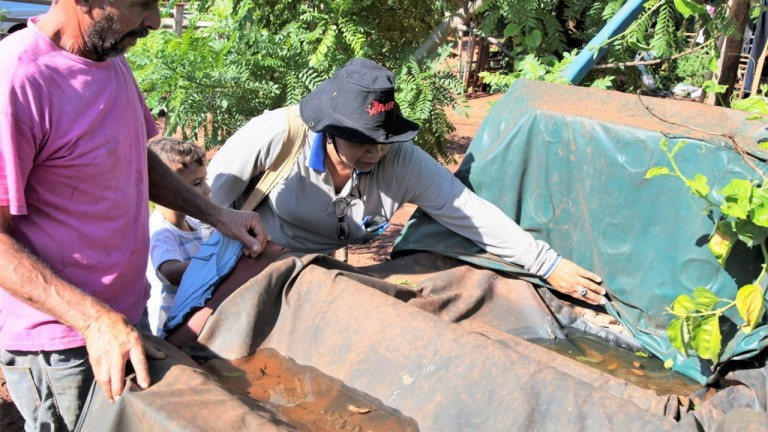 Casos de dengue se mantém em queda na Capital, mas cuidados devem ser constantes | CGNotícias