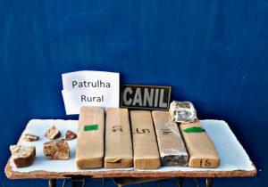 Foto de Em ação conjunta CANIL e Patrulha Rural do 2° BPM realiza prisão por tráfico de drogas em Água Clara. |