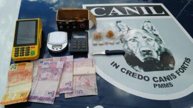 Foto de Força Tática e guarnição do CANIL do 2º BPM realiza prisão por tráfico de drogas. |
