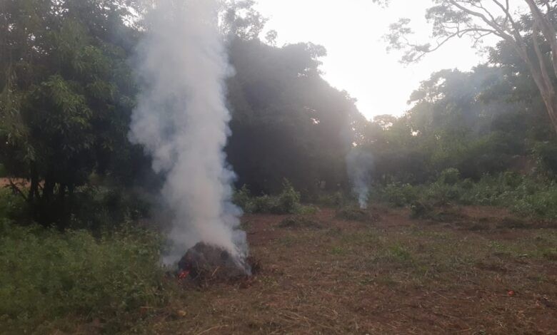 PMA de Aquidauana autua durante a operação Prolepse pescadora profissional de 43 anos por incêndio em terreno baldio prejudicando vários vizinhos pela fumaça intensa |
