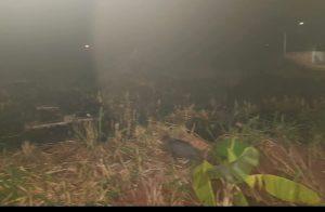 PMA de Rio Negro autua infrator em R$ 1,2 mil por incêndio em terreno no centro da cidade e já são 40 atuados por incêndios urbanos em dois meses de operação Prolepse |
