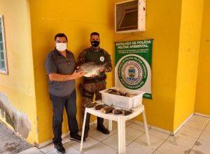 Foto de PMA e PM de Porto Murtinho prendem infrator com pescado ilegal, apreendem 28 Kg de peixes e veículo e doam o pescado para instituição que trabalha com crianças carentes |