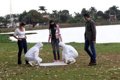 PREVENÇÃO: Zoonoses, Entomologia e Meio Ambiente realizam monitoramento na Lagoa Maior para identificar carrapato-estrela