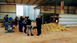 Polícia Civil realiza incineração de mais de 2,5 toneladas de drogas em Jardim