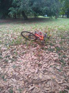 Polícia Militar Ambiental de Bela Vista recupera bicicleta que acabara de ser furtada, quando ladrão estava quase adentrando o Paraguai |