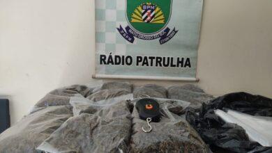 Foto de Policia Militar apreende drogas dentro de quarto de vitima de Covid-19 |