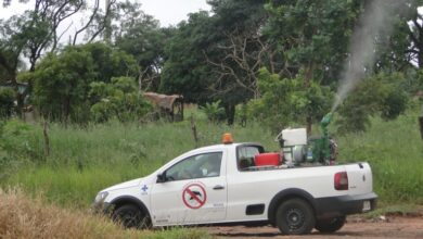 Foto de Aliado no combate ao Aedes aegypti, fumacê circula por nove bairros | CGNotícias