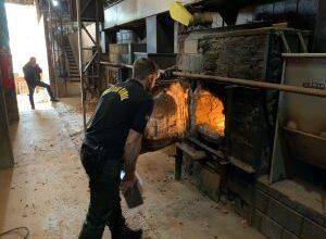 Foto de Polícia Civil incinera mais de meia tonelada de cocaína apreendida nesta segunda-feira