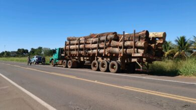 Foto de Polícia Militar Ambiental de Campo Grande apreende carreta carregada com toras de madeira transportadas ilegalmente e autua madeireira em R$ 8,4 mil |
