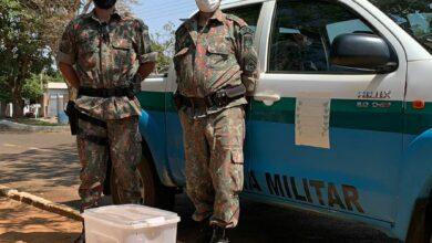 Foto de Polícia Militar Ambiental de Batayporã captura serpente em residência na cidade Taquarussu |