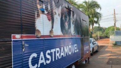 Foto de Castramóvel segue atendendo cães e gatos na USF Vila Alegre
