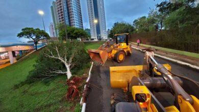 Foto de Prefeitura mobiliza equipes para solucionar estragos da chuva e informa canais de atendimento | CGNotícias